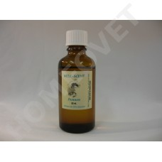 Essential pine needle - oil for the respiratory system