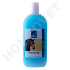 MediScent Shampoo Lavender for White and Grey horses