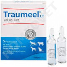 Heel Traumeel LT ad us. vet. against swelling, inflammation, Arthrities. homeopathy