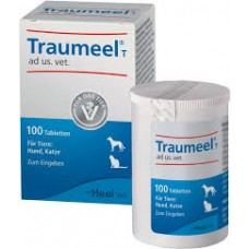 Heel Traumeel tablets for problems with the support and musculoskeletal system. homeopathy