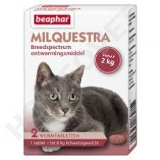 Beaphar Milquestra cat wormer - 2 beef flavoured tablets