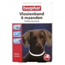 Flea Collar reflective by Beaphar for up to 6 months