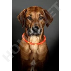 Visio Light - LED lighted dog collars
