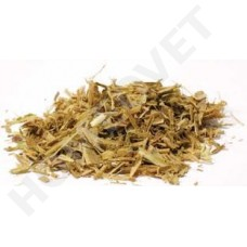 Homeovet White Willow Bark ( Salix Alba ) is indicated in pain, degenerative joint disease (osteoarthritis), and fever in horses