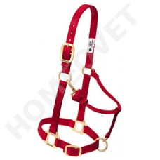 Nylon head collar mixed colors
